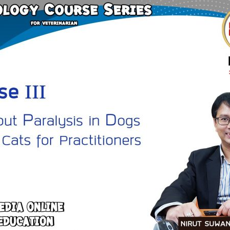 All about paralysis in dogs and cats for practitioners