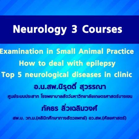 Neurology 3 Courses