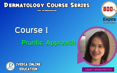 Course I : Pruritic approach