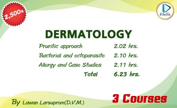All Dermatology 3 Course – ivediaonline