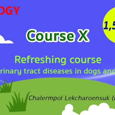 (COURSE X) Refreshing course for urinary tract diseases in dogs and cats