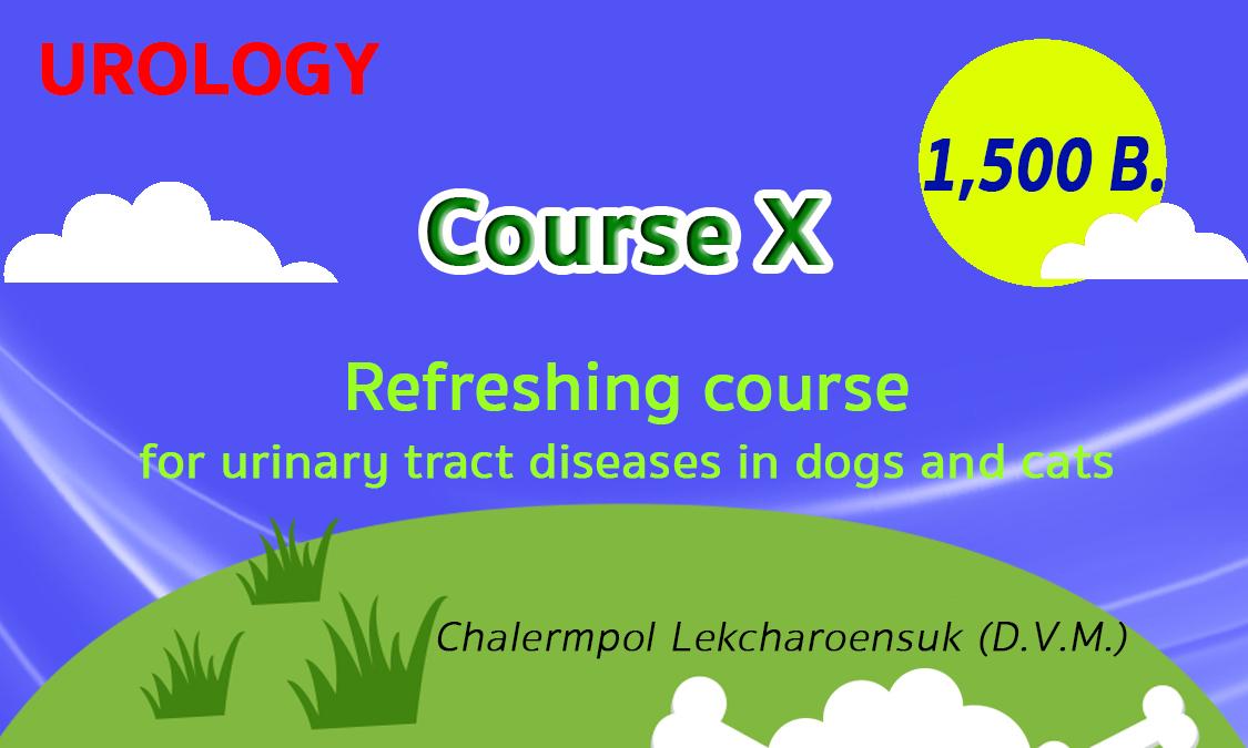 Urology-Course10