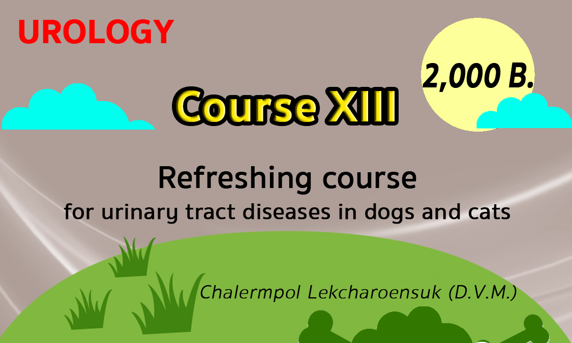 Urology-Course13