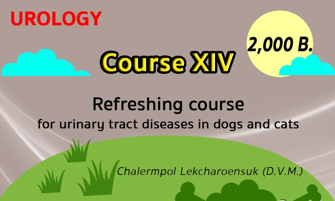 Urology-Course14