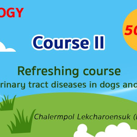 (COURSE II) Refreshing course for urinary tract diseases in dogs and cats