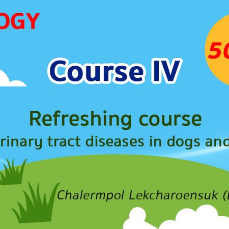 (COURSE IV) Refreshing course for urinary tract diseases in dogs and cats