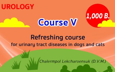 (COURSE V) Refreshing course for urinary tract diseases in dogs and cats