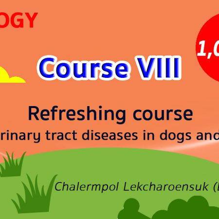 (COURSE VIII) Refreshing course for urinary tract diseases in dogs and cats