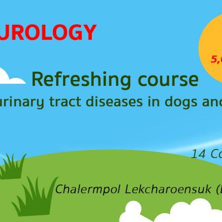 All Urology 14 Courses