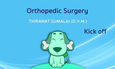 Kick off in Orthopedic Surgery