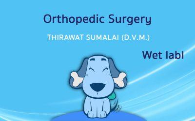 Orthopedic Surgery (Wet lab) I