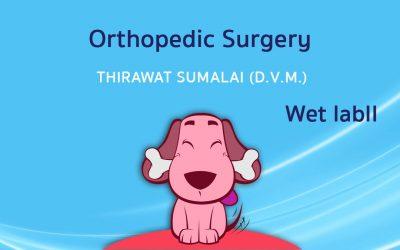 Orthopedic Surgery (Wet lab) II