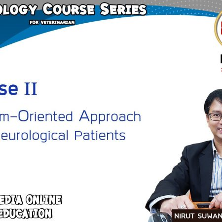 Problem Oriented Approach to Neurological Patients