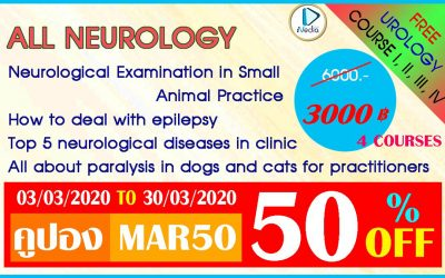 All Neurology 4 Courses