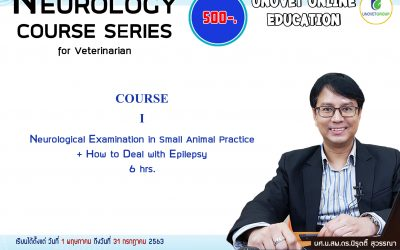 COURSE I Neurological Examination in Small Animal Practice + How to Deal with Epilepsy (UN)