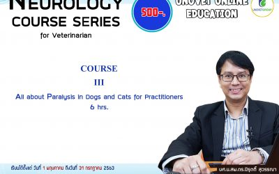COURSE III All about paralysis in dogs and cats for practitioners (UN)
