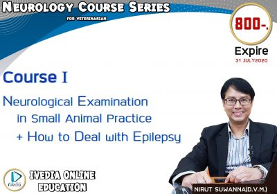 Neurological Examination in Small Animal Practice + How to Deal with Epilepsy