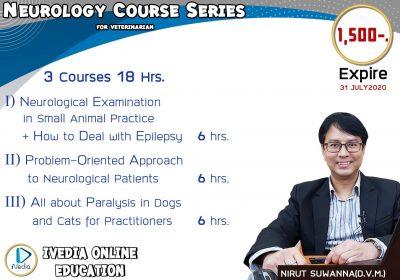 Neurology 3 Courses (iVedia)