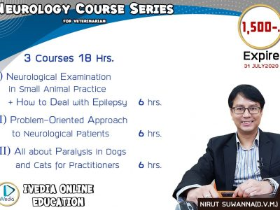 Neurology 3 Courses (iVedia)