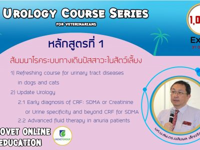 Urology course series (UN)