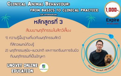 Animal Behaviour (UN)