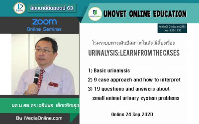 UPDATE URINALYSIS 2020-08