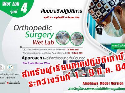 ป้องกัน: Orthopedic Surgery (Wet Lab) IV