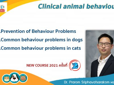 Animal behaviour course series 2021 Live Stream 2